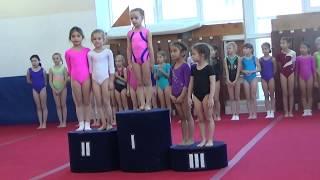 Спортивная гимнастика сдача на 3 й юношеский разряд