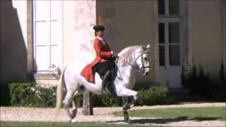 Teaser Spectacle Équestre à la carte, Epoque XVIIIe siècle                                   Château