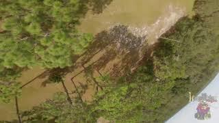 Raw FPV Flight Footage #armattan #Kissv2 #HQProp