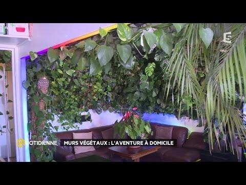 Le microorganisme végétal du pied les bulles sous la peau