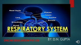 RESPIRATORY SYSTEM (ONLINE COURSE OF M.R. TRAINING)