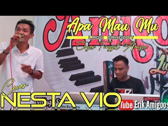 Apa Mau Mu || Cover Nesta Vio || Lagu Orgen Tunggal Terbaru 2020 || Erik Amigoos || On Stage Amigoos