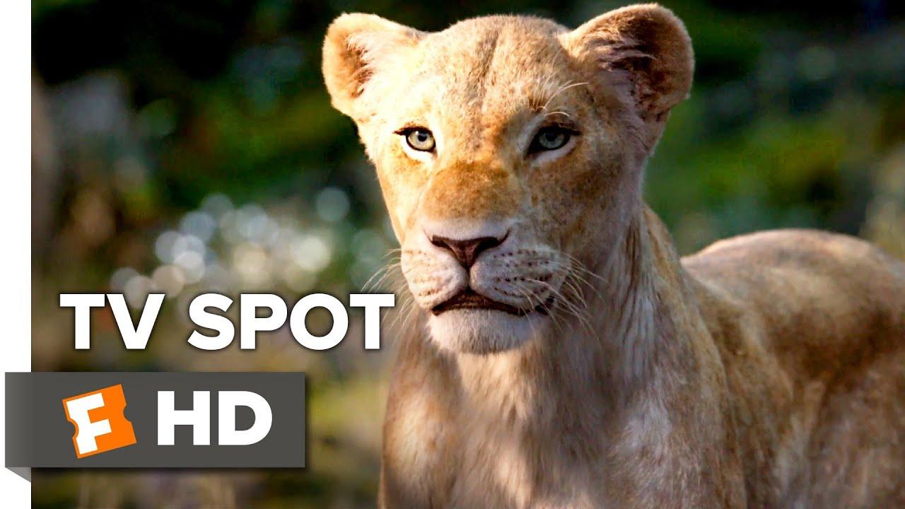 The Lion King 2019 Beyonce Timon And Pumbaa Tv