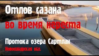 Запреты на весеннюю рыбалку в омской области