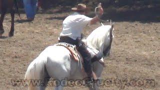 Jackass Whips Horse At Salinas Rodeo