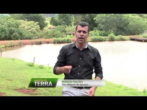 Mini fazendinha em São Miguel do Iguaçu - PR