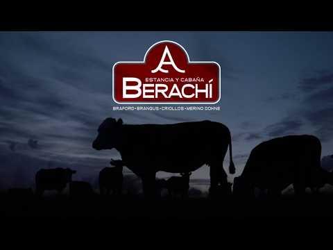 Video institucional de Estancia y Cabana BERACHI (Cerro Largo, Uruguay)