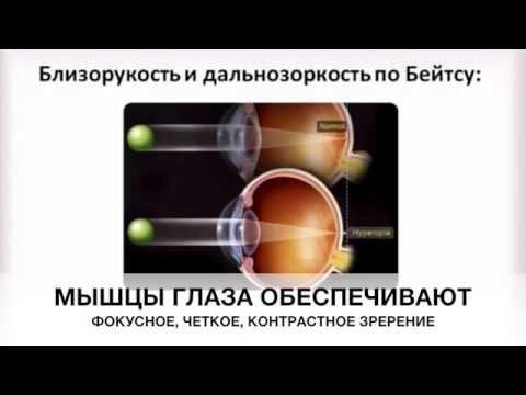 Зрение плюс отзывы