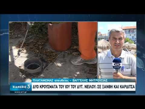 Ιός του Δυτικού Νείλου | Δύο κρούσματα σε Ξάνθη και Καρδίτσα | 19/07/2020 | ΕΡΤ