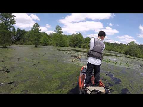 Delaware pond fishing: Chipmans