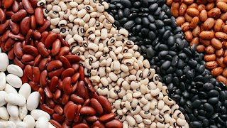 Consumo interno em alta e oferta curta desde o início do ano fazem feijão carioca trabalhar em novo