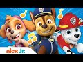 PAW Patrol Theme Song | Nick Jr. | Music