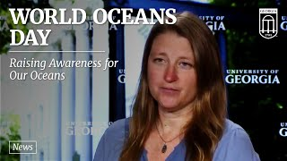 Newswise:Video Embedded world-oceans-day:-uga-professor-jenna-jambeck-to-speak-to-united-nations