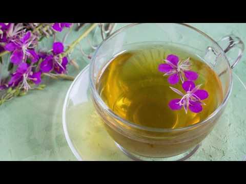 Иван-чай: Польза или вред для женщин. В чём же польза Кипрея?