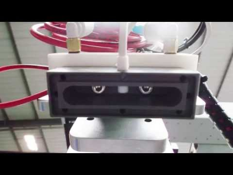 Video of miniature in mould labeling pinning system for use in packaging production
