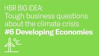 Is fighting climate change a job for businesses in developing economies or just developed regions?