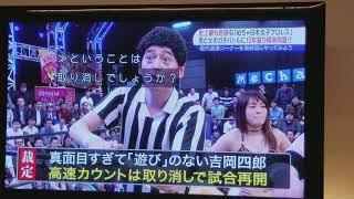 めちゃ日本女子プロレス