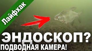 Эндоскоп с алиэкспресс на зимней рыбалке