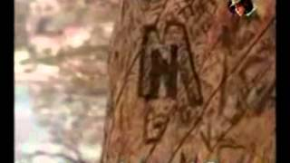 preview picture of video 'شيلة يا وليفي أداء مانع بن عشيمه'