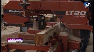Лесоперерабатывающие производства Новгородской области получат дополнительную древесину