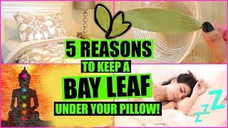 5 REASONS TO SLEEP WITH A BAY LEAF UNDER YOUR PILLOW! │ MANIFEST WISHES WITH BAY LEAVES