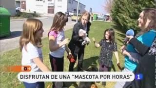 preview picture of video 'La protectora de animales de Pamplona en la 1 !!!'