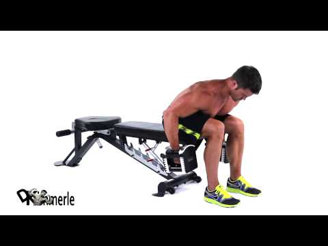 Seated Rear Delt Row Elbows In