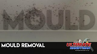 Mould removal - Video Youtube
