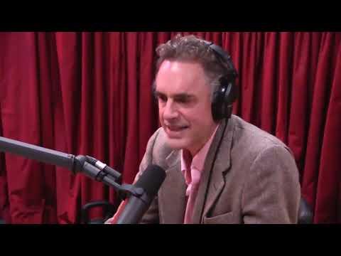 Jordan Peterson gets the true Joe Rogan Experience (Chaos)