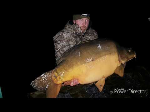 76lb Carp  *Owner Video*, Mar 2019
