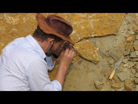 Meet the Paleontologists