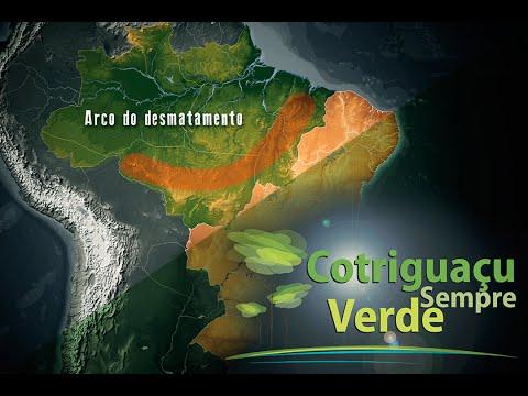 Cotriguaçu Sempre Verde - Projeto ambiental no arco do desmatamento na Amazônia