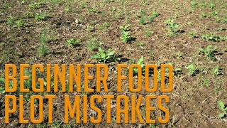 4 Beginner Food Plot Mistakes!