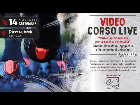 Video corso live: