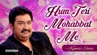 Hum Teri Mohabbat Mein   Phool Aur Angaar   Mithun Chakraborty   Kumar Sanu & Sadhana Sargam Hits