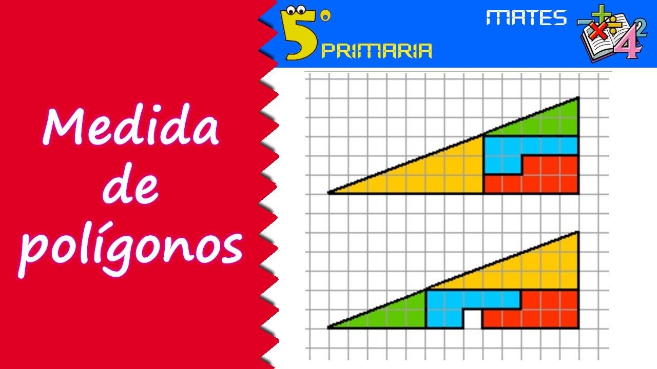Medida de polígonos. Mate, 5º Primaria. Tema 9