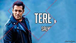 Tere Bina (Lyrics) - Salman Khan, Jacqueline   - YouTube