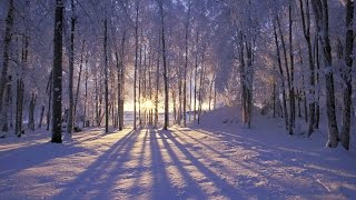 Jo Stafford ~ I've Got My Love to Keep Me Warm