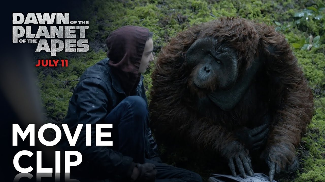 Dawn of the Planet of the Apes - Hanging Out