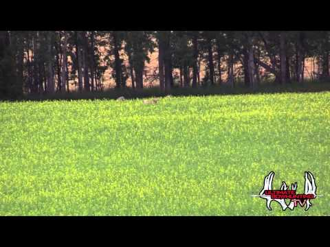 Ultimate Bowhunting TV Part 2 with Northern Alberta Outfitters