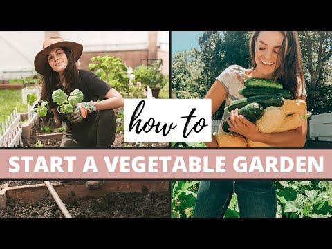 , title : 'How To Start A Vegetable Garden | Gardening Tips'