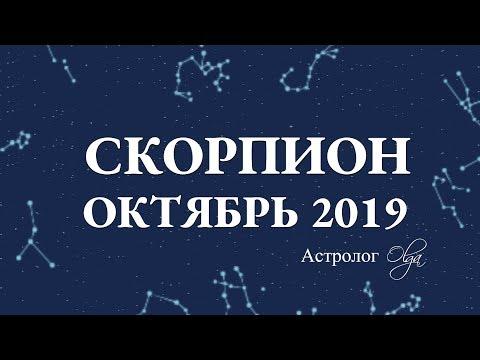 МЕСЯЦ НАЧИНАНИЙ СКОРПИОН гороскоп ОКТЯБРЬ 2019. Астролог Olga