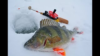 Самотряс для зимней рыбалки
