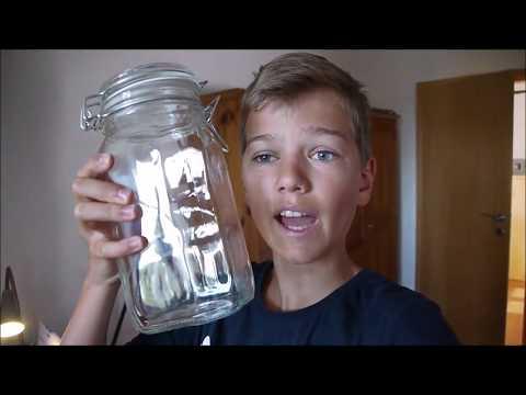 Vlog_037 - Wasserpflanze fürs Zimmer DIY