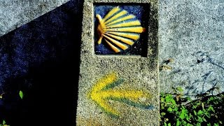 Take part in Mindful walk of the Camino de Santiago | Would You Believe? | RTÉ One