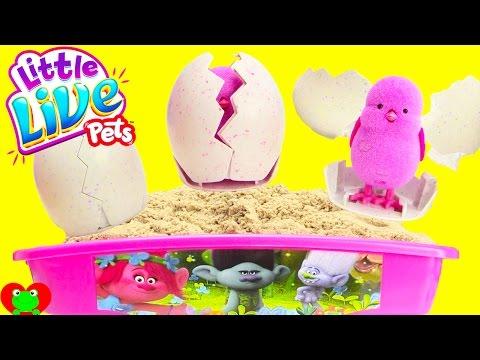Trolls Sand Wagon Digging for Little Live Pets Surprise Chicks