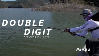 DOUBLE DIGIT MEXICAN BASS!!