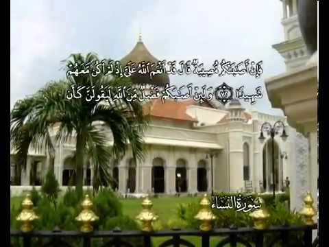 Сура Женщины <br>(ан-Ниса) - шейх / Мухаммад Айюб -