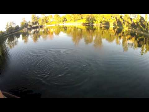 Bass Fishing on a Top Secret Pond