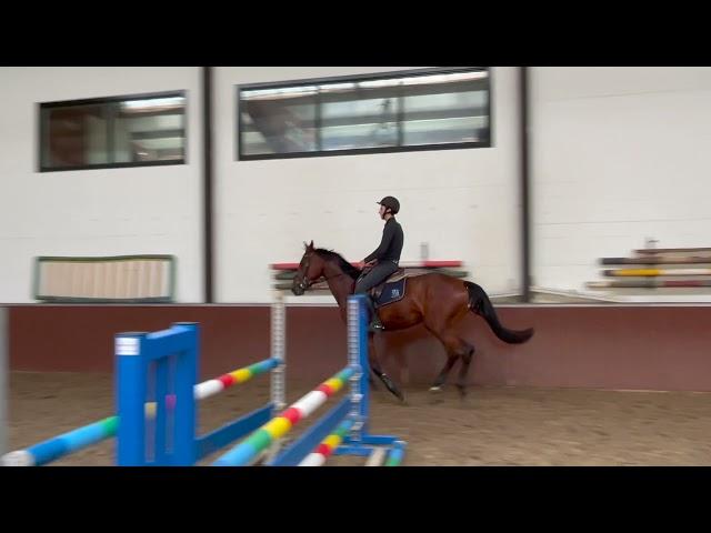 Mastermind ES under the saddle